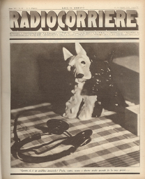Anno 1931 Fascicolo n. 28