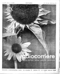 Anno 1933 Fascicolo n. 29
