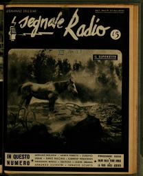 Anno 1945 Fascicolo n. 13