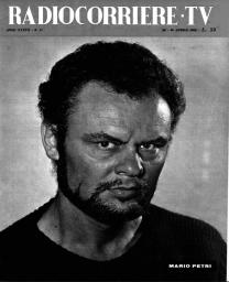 Anno 1960 Fascicolo n. 17