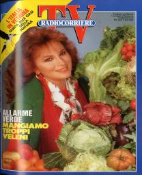 Anno 1992 Fascicolo n. 17
