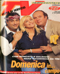 Anno 1995 Fascicolo n. 38